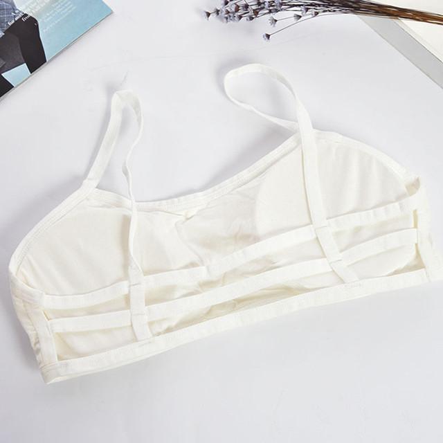 Simple and Elegant Crop Top