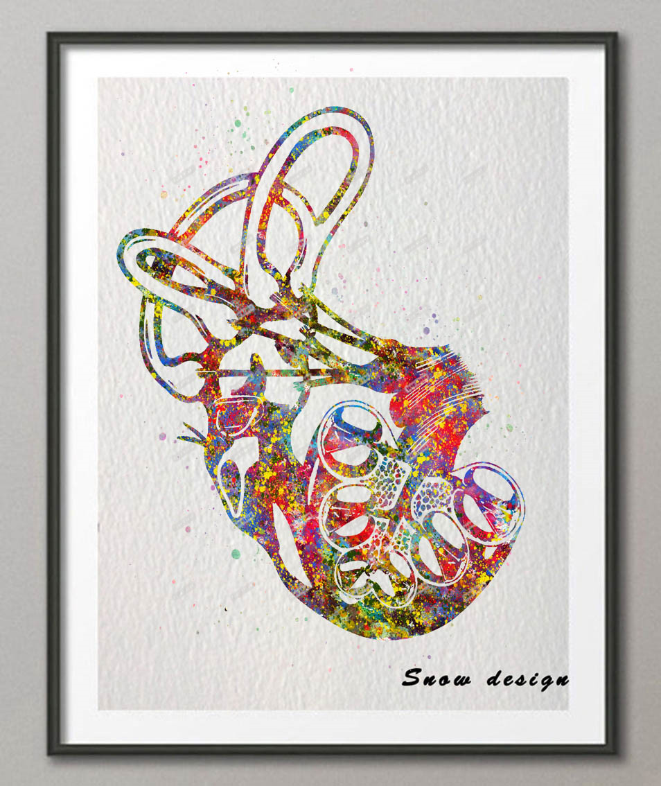 Original Watercolor Cochlea of Inner ear poster print Pictures ...