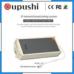 Oupushi bezprzewodowa IP głośnik kolumnowy na zewnątrz Stereo POE głośnik ścienny wzmacniacz z oprogramowaniem  pilot zdalnego sterowania APP
