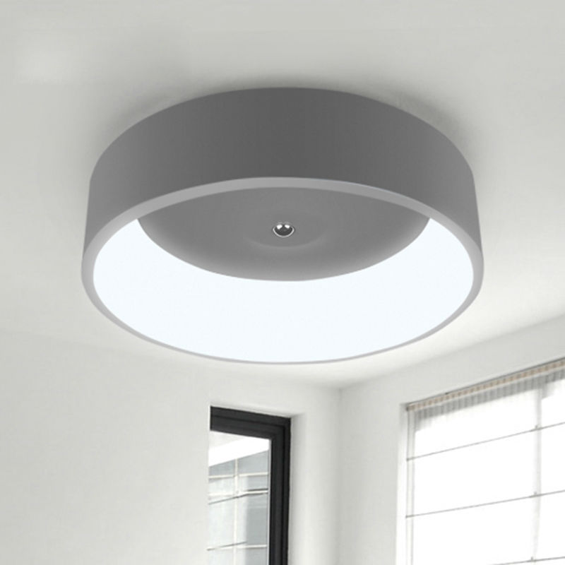 modern led ceiling light for living room bedroom ring 450mm aluminum+Acryl High brightness 27W LED lamp mount lights
