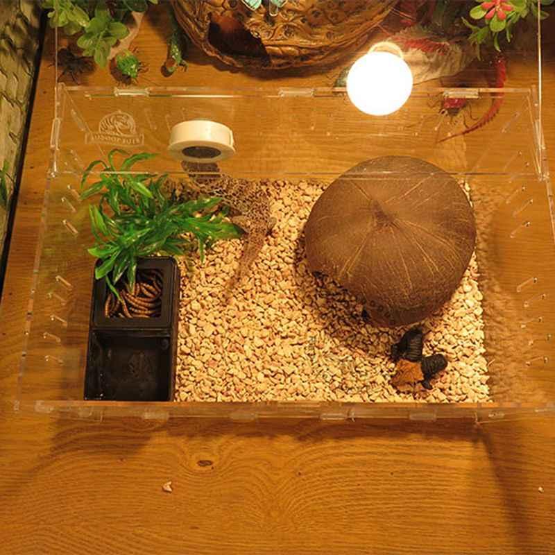 Black Plastic Reptiles Water Food Box Terrarium For Feeding Breeding Insect Turtle Pet