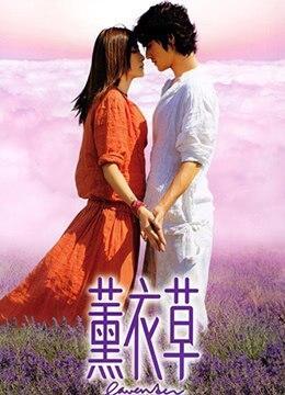 《薰衣草》2000年香港奇幻,爱情电影在线观看
