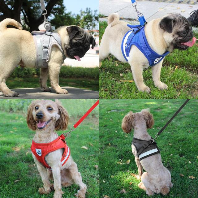 Dog Harness for Chihuahua Pug Small Medium Dogs Nylon Mesh Puppy Cat Harnesses Vest Reflective Walking Lead Leash Petshop 4