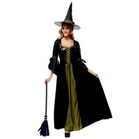 Adult Women's Sexy Witch Classic Fantasy Halloween Costume