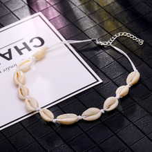 Natural Seashell Choker Collar Necklace