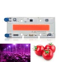10 PCS Led Grow Light Chip 30W 50W 70W Full Spectrum 380nm~840nm AC Best For Hydroponics Greenhouse DIY for COB Lamps