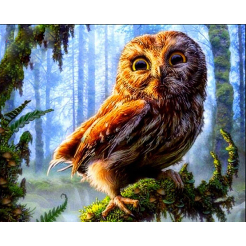DIY Digital Painting By Numbers owl on tree oil painting mural Kits Coloring Wall Art Picture Gift frameless