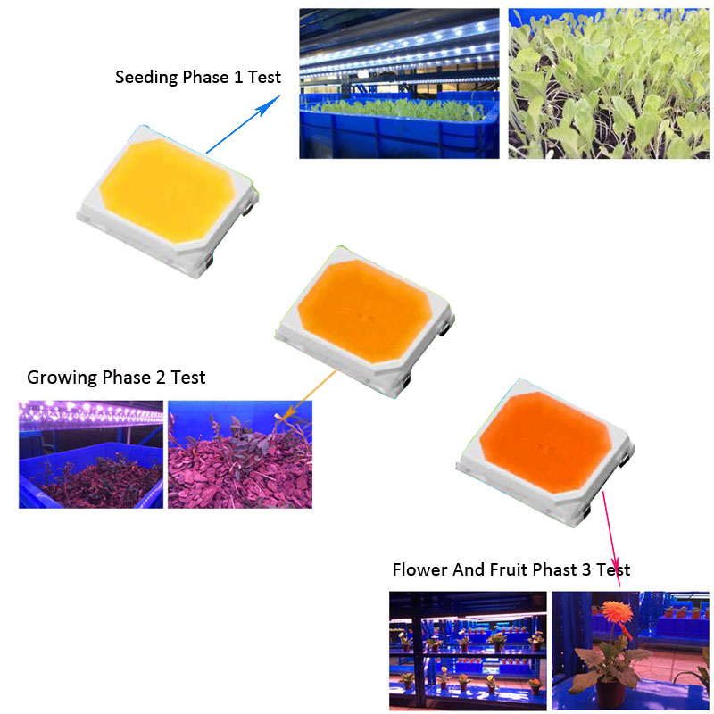 Full Spectrum SMD LED 2835 3V 120ma  Grow LED Chip Special For Grow Light Seeding Phase  Growing Phase Flower And Fruit Phase