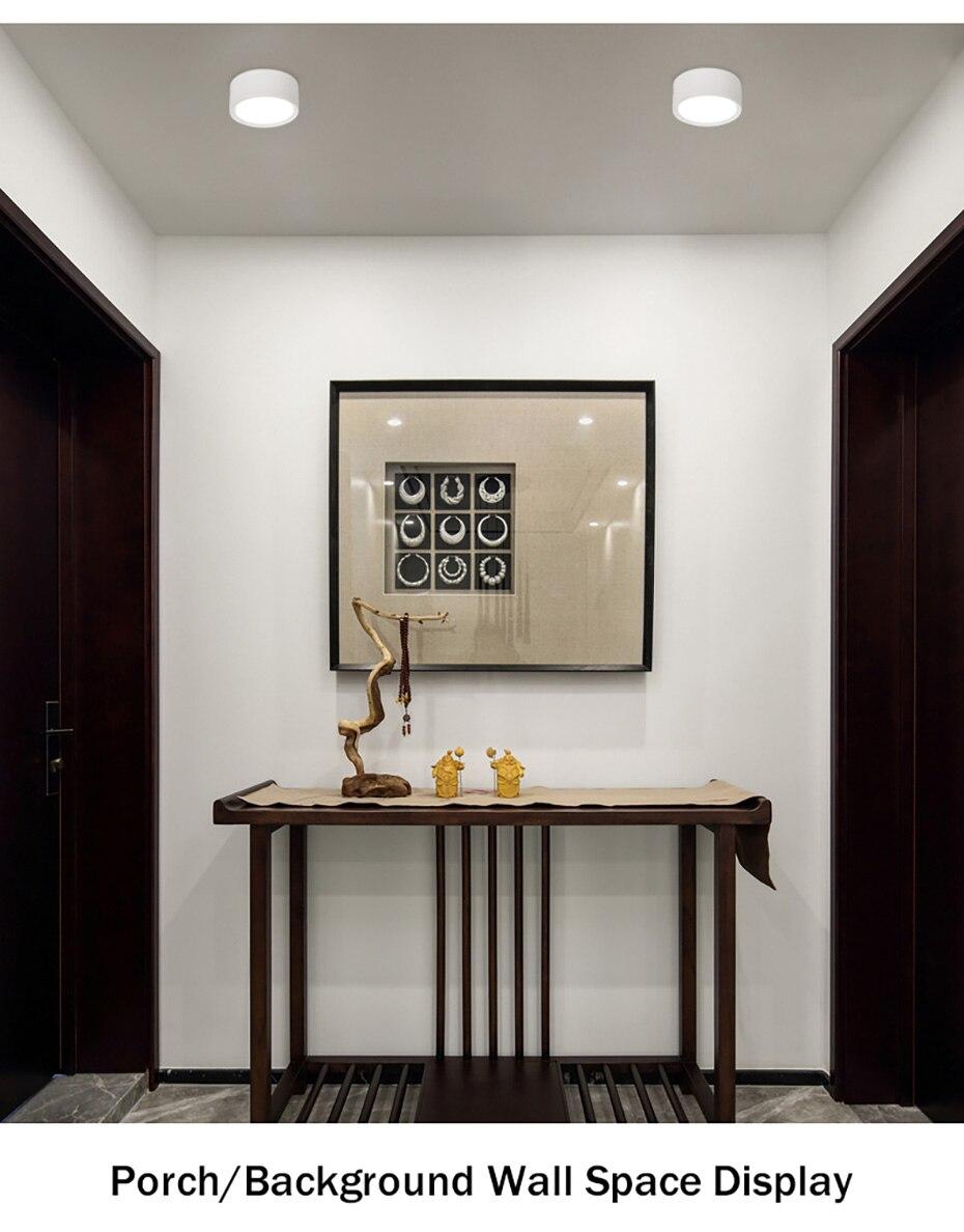 Ceiling Lamp- (17)