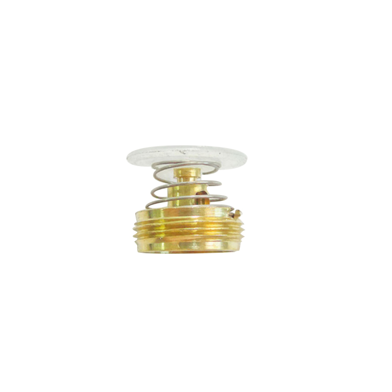 5 PCS Gas Water Heater Accessories And Linkage Valve Regulator Core