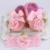 Zapatos de bebé del Bautizo Bautismo chicas Diademas de diamantes de Imitación Establece, Niño Zapatillas De Bailarina, Sapatos infantis meninas apoyos de la foto