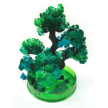 iWish 2019 14x13cm DIY Green Magic Growing Paper Bonsai Tree Kit Magical Grow Trees Regalos Magicos Science Toys For Children