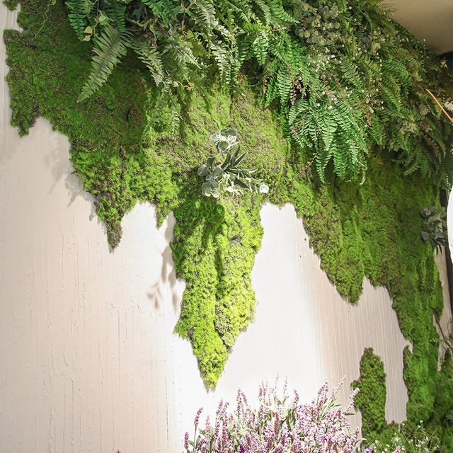 High quality artificial green plant immortal fake flower Moss grass home living room decorative wall DIY flower mini accessories 5