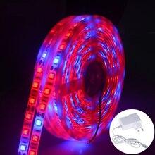 1 m 2 m 3 m 4 m 5 m LED فيتو LED تنمو الاضواء 60 المصابيح/m 5050 شاشة ليد بطيف كامل ديود Fitolampy تنمو مصباح مع محول الطاقة لمصنع