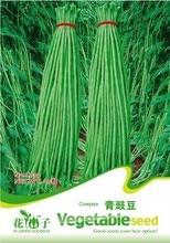 Растительное длинные Семена фасоли, оригинальной Упаковке 20 шт. Сад бонсай овощи ФАСОЛЬ семена, супер Легкий Расти