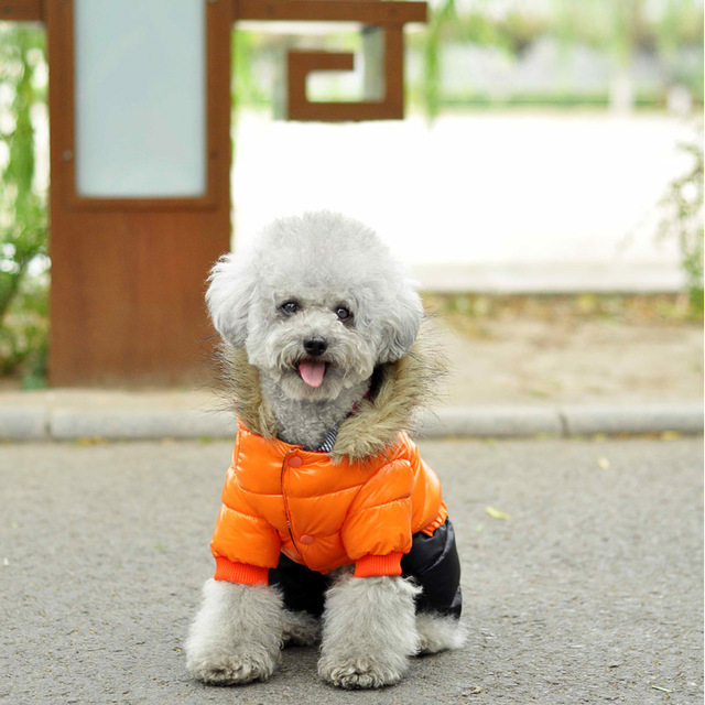 Hot Sale Winter Pet Dog Clothes Super Warm Down Jacket For Small Dogs Waterproof Dog Coat Thicker Cotton Hoodies For Chihuahua 4