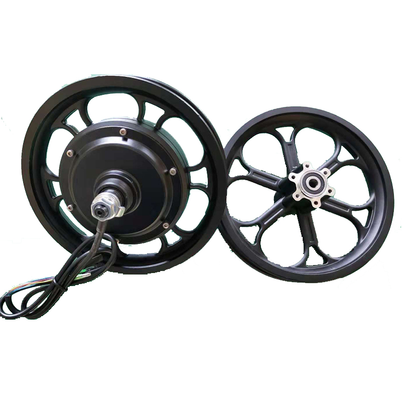 Electric Bicycle Hub Motor 36V350W 48V500W Brushless Gearless Wheel Motor Set With 12inch Front Aluminum Rim