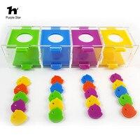 Purple Star 9.84*6*6 Pet Bird Parrot Puzzle Training Intellectual Development Toys Color Separation Coin Box Bird Toys