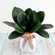 Hot 1Pcs Phalaenopsis leaf artificial plant decorative flowers auxiliary material flower decoration Orchid leaves wholesale