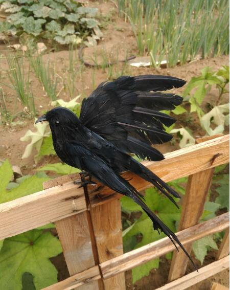 about 22x30cm black feathers crow spreading wings artificial bird model handicraft prop,home garden decoration gift p2120