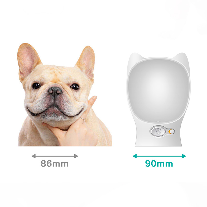 Portable Water Dispenser For Pets: Portable Pet Water Dispenser