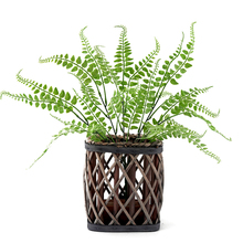 44cm 5 Forks Artificial Fern Grass Green Plant Simulation Persian Leaves Wall Hanging Plants Home Garden Wedding Decoration цены