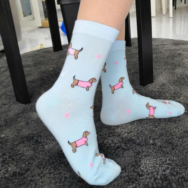 dachshund socks cute crazy socks luxury blue sausage dog socks women cotton sox for weiner dog lover gift 2 pairs/lot wholesale