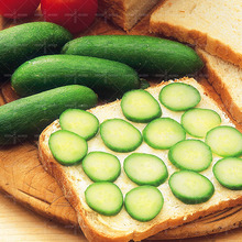 Hot-sale!100pcs/bag giant cucumber seeds rare NO-GMO delicious vegetable seeds for home garden planting supply free shipping