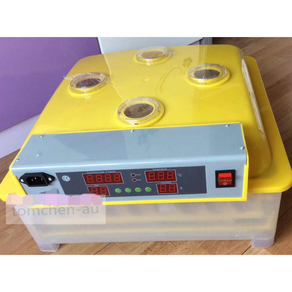 mini chicken incubator egg automatic mini egg incubator 48 eggs chicken incubator top selling automatic egg incubator mini 48 egg incubator for sale
