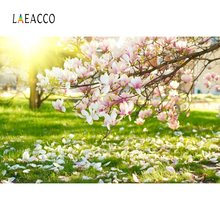 Laeacco Spring Backdrops Blossom Flower Cherry Petals Green Grass Sunshine Scenic Photo Backgrounds Studio