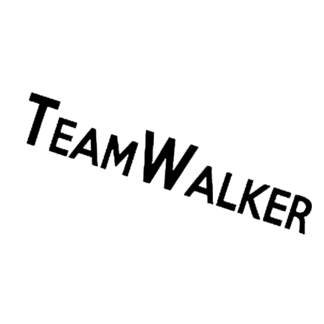 rip paul walker team walker fast and furious car styling vinyl decal rh aliexpress com  fast and furious logo maker