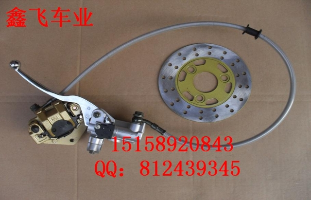 Monkey small pinturicchio orangutan monkey motorcycle disc brake assembly band brake disc