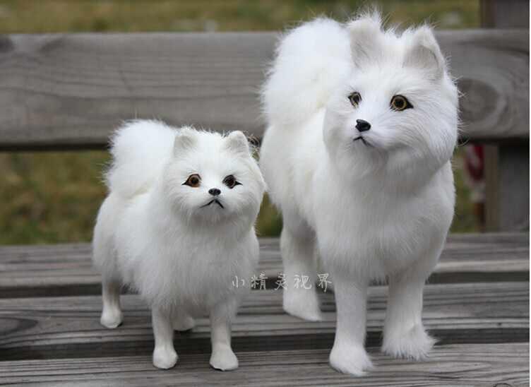 """צעצועי כלב חמוד גדול וכלי קטן עור אמיתי צעצועי כלב סמויד הסימולציה כלב בובות על 24*20*8 ס""""מ ו 17*15*6 ס""""מ 0480"""