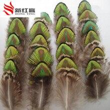 """50 STÜCKE seltene gefärbt golden peacock federn 5-8 cm/2-3 """"feder dekorationen"""