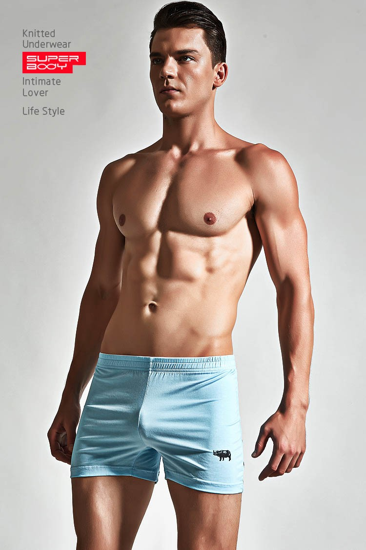 Sexy Men Underwear Boxer Shorts Trunks Cotton Gay Penis Mens Boxers Man Brand Sleepwear High Quality Trunks Casual Underpants