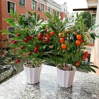 Home decoration fruit simulation bonsai simulation decoration artificial flowers fake green potted plant decorations