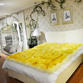 Super soft wool mattress Six colors, six size Winter's most warm mattress