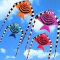 Larga Cola de Pez Cometa Nylon Ripstops Fácil Volar 30 M Mango Placa de Línea de Cadena Ree Kite Deportes Deportes de Playa