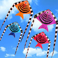 Longo Rabo de Peixe Nylon Placa Linha de Pipa Ripstops Fácil Voar 30 M Alça Corda Ree Esportes Praia Kite Esportes