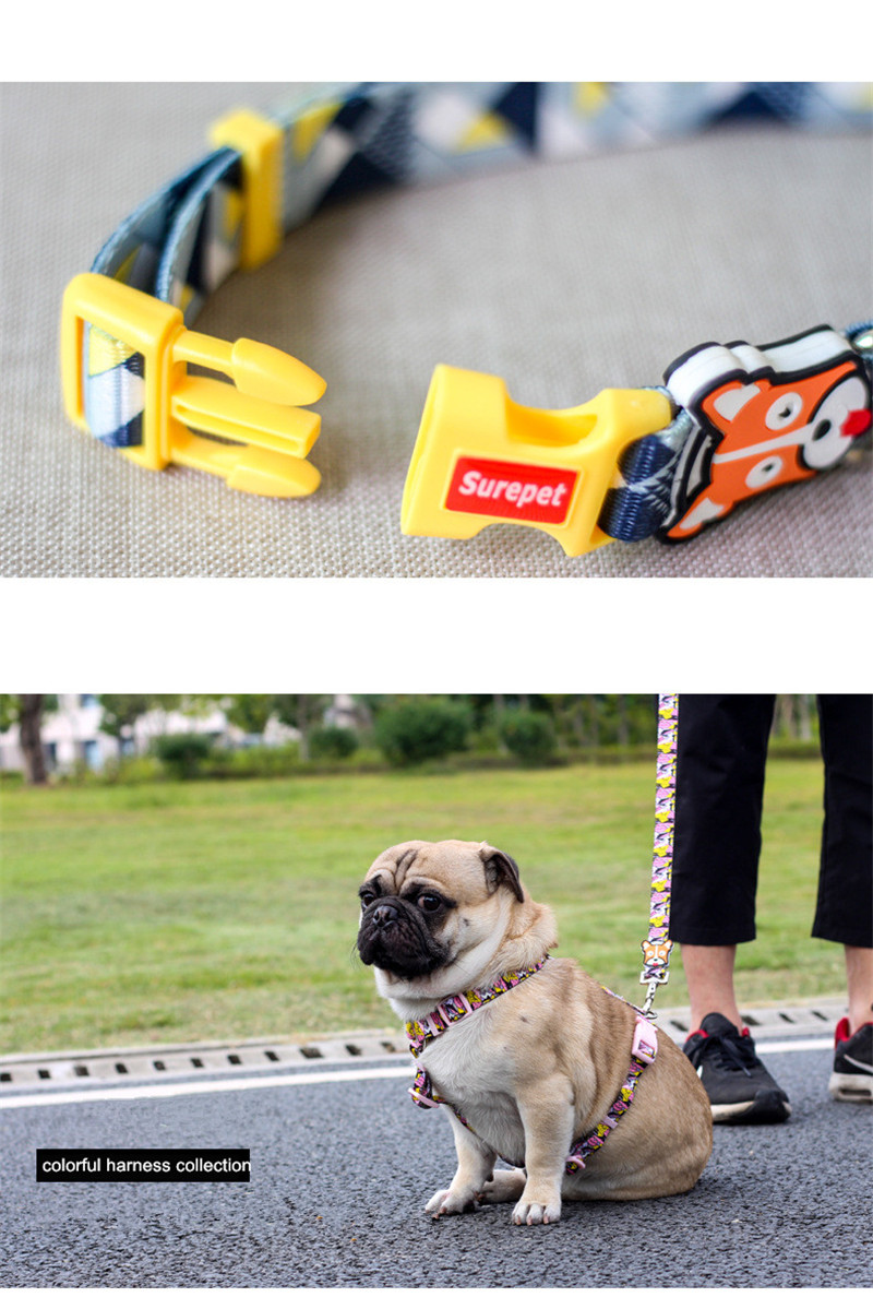 Dog Collars  (14)