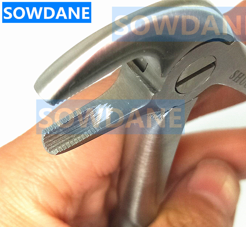Dental Lower Mandibular Molars tooth extraction forcep Saw tooth for minimally invasive toothdental instrument CurvedDental Lower Mandibular Molars tooth extraction forcep Saw tooth for minimally invasive toothdental instrument Curved