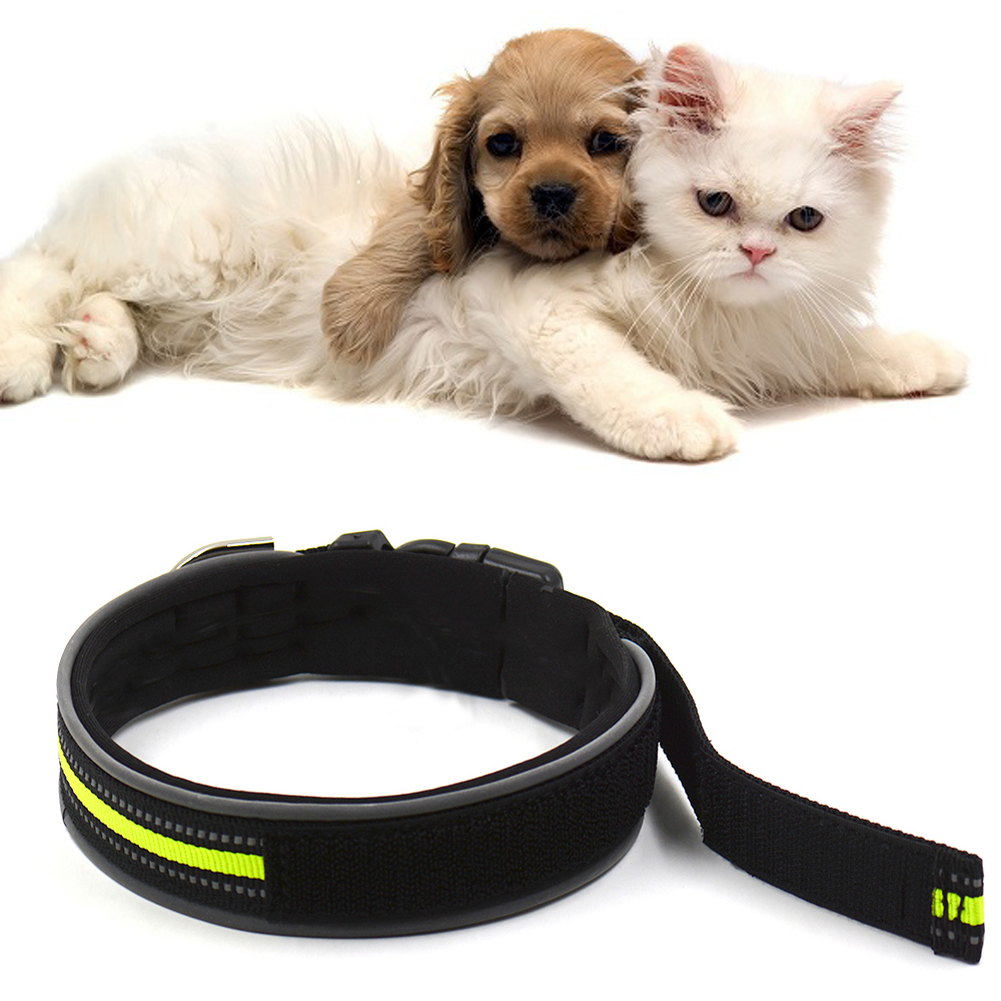 Diving Material Reflective Design Pet Dog Collar Rhinestone Studded Buckle Dog Collar L Size