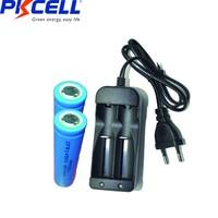 2 pz/lotto PKCELL Lifepo4 Batteria Ricaricabile 3.2V 14500 AA 600MAH Batterie Al Litio IFR14500 e li-ion Battery charger