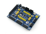 STM32 Development Board