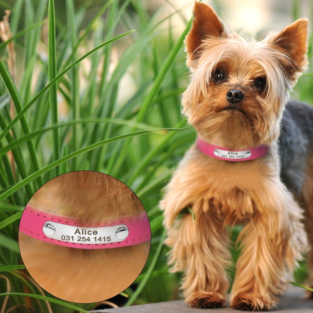 Collar de perro de cuero con relleno interior personalizado con placa de identificación grabada 17