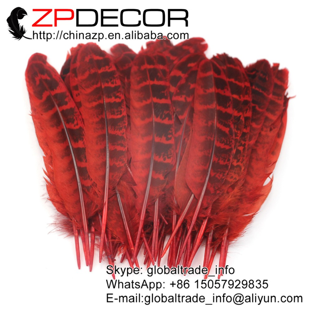 red ringneck hen feathers