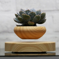 AMW Magnetic Suspended Potted Plant Wood Grain Round LED Levitating Indoor Air Plant Pot For Home