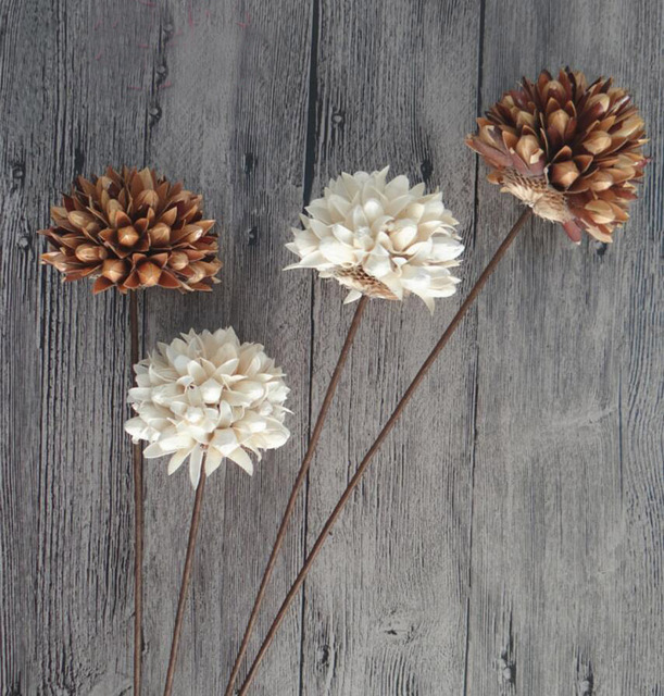 5pcs Natural Dried Whitebrown Magnolia Flower With Iron Wire For