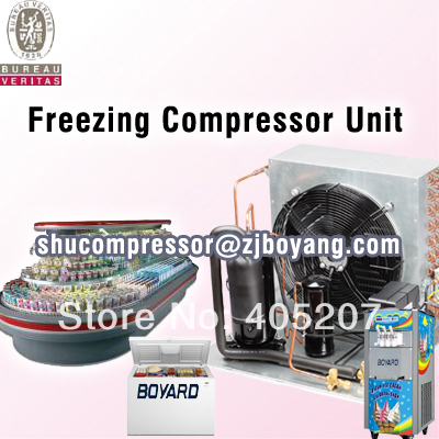 cold storage freezer cold room  cooling room  freezer cold room with condensing unit cold storage accessibility and agricultural production by smallholders