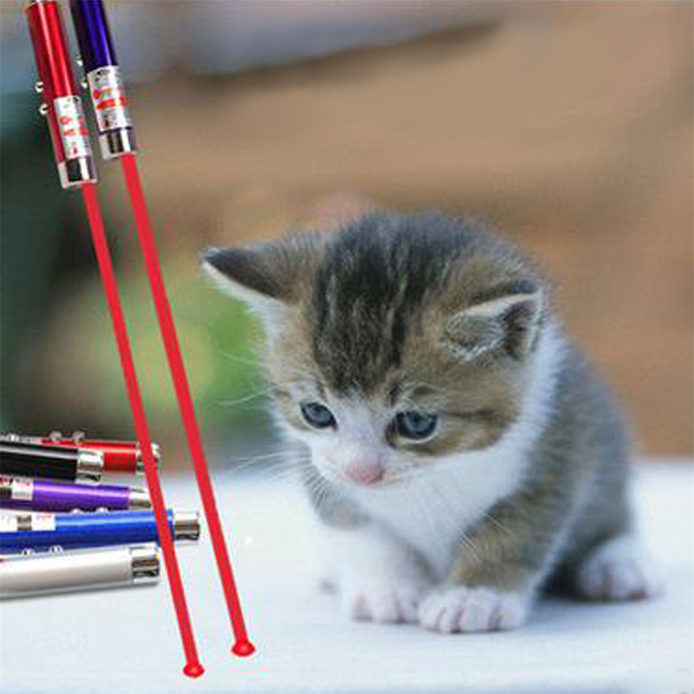 Laser funny cat stick New Cool 2 In1 Red Laser Pointer Pen With White LED Light Childrens Play Cat Toy Fashion